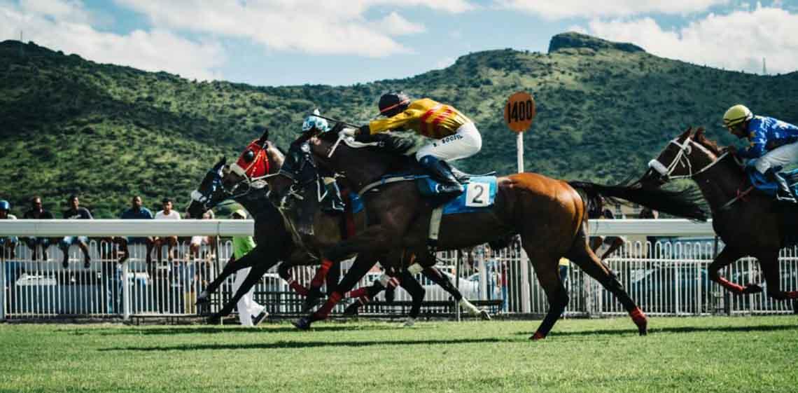 dive-horse-photo